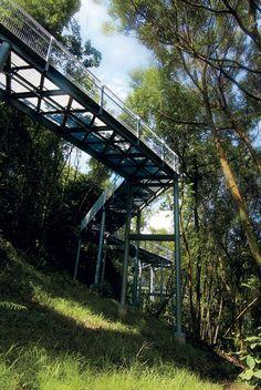 Alexandra Arch & Forest Walk, Alexandra Road & Telok Blangah Hill Park, Singapore by LOOK Architects