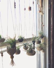 You can easily create a hanging planter as it is very simple. You just need is one container that is capable of holding some plants, potting soil, &