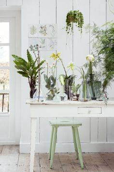 HARTwerck | werkplek - planten en bloemen op de werkplek of in je praktijkruimte #workspace #homeoffice #groen #greenroom