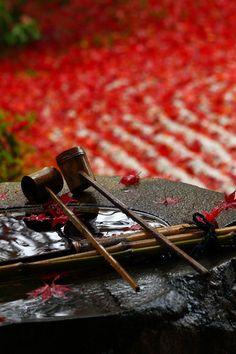 :ねこづらどき Japanese temple - chozubachi