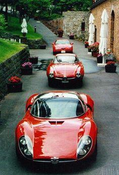 1995 Alfa Romeo GTV, 1963 Alfa Romeo Giulia 1600 Sprint Speciale, 1967 Alfa Romeo Tipo 33 Stradale Ferrari vs Lamborghini :D find the Alfa Romeo Gtv, Alfa Romeo Cars, Alfa Romeo Giulia, Maserati, Lamborghini Lamborghini, Ferrari 458, Luxury Sports Cars, Sexy Cars, Hot Cars