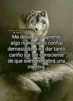 Wolf Quotes, Joker Quotes, Sad Quotes, Life Quotes, Cheer Up Quotes Funny, Motivational Phrases, Inspirational Quotes, Jenny Rivera Quotes, Shadow Wolf