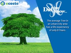 Interesting Fact about #Trees
