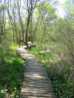 Wonderful Places, Hungary, Trip Advisor, Sidewalk, Country Roads, Nature, Travel, Naturaleza, Viajes