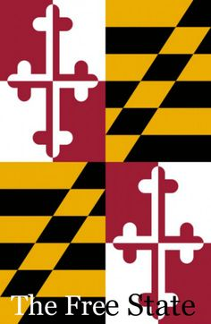 Award winning Maryland flag - only USA state flag based on English family crests (Lord Baltimore, the Calvert family).  Nickname: The Free State