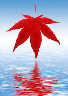 Happy Canada Day! Proud to be Canadian.