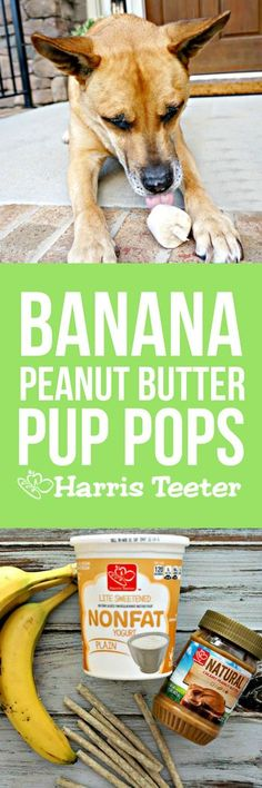 Treat time!  These Peanut Butter Banana Pup Pops are a breeze to whip up; make an extra batch and keep them on hand for warm days after outside play.
