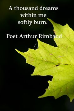 """A thousand dreams within me softly burn.""  -- Poet Arthur Rimbaud"