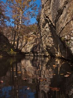 Lusk Creek Canyon Hiking Places, Places To Travel, Illinois State Parks, Shawnee National Forest, Southern Illinois, And So The Adventure Begins, Day Trips, Larry, Kayaking