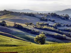marche, nature, travel, turismo, italia, italy