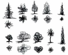 Abstract Line tree Drawings | Description: Description: Description: tree forms