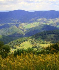 This view is from Spruce Mountain (near Spruce Knob) looking into Germany Valley farms, WV   This is almost heaven.