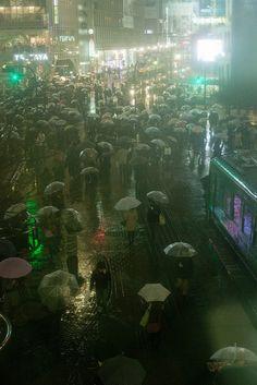 A Thousand umbrellas in a sea of rain