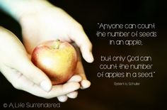 """""""Anyone can count the number of seeds in an apple, but only God can count the number of apples in a seed."""" Robert H. Schuller via http://www.alifesurrendered.com"""