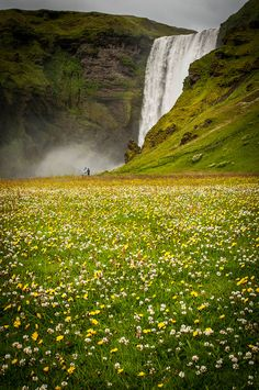 Our waterfalls are even more beautiful in the summer, when the valleys are in bloom, and the flowers adds romance to the landscape, like here at the powerful waterfall in Skogafoss, Iceland. Places Around The World, Oh The Places You'll Go, Places To Travel, Places To Visit, Beautiful World, Beautiful Places, Magic Places, Voyage Europe, Iceland Travel