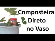 Composteira sem minhocas direto no vaso - YouTube