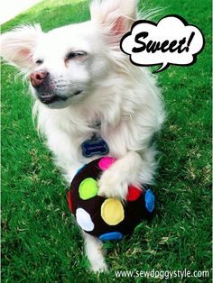Sew DoggyStyle: DIY Candy Crush Color Bomb Squeak Toy