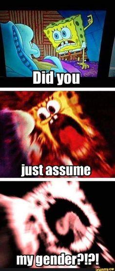 assumedgender, spongebob, meme, triggered