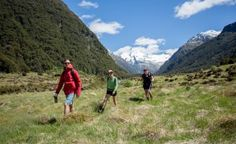 Our New Zealand South Island tour with all the best hiking and adventures. Pure South is perfect for those hiking NZ's South Island with limited time. South New Zealand, New Zealand Tours, Cherry Picking, New Zealand Adventure, Adventure Tours, South Island, Good News, Trail, Hiking