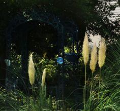 Late summer garden, 2015