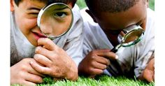 13 Dazzling Discoveries Kids Can Make with Outdoor Apps   Common Sense Media