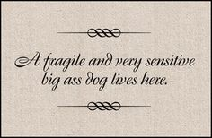 A Fragile Dog Funny Doormat - eclectic - doormats -  - by Mookie Gifts