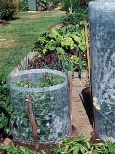 Turn your tomato cage into a mini greenhouse by wrapping the outside with clear plastic. This cage is made from wire rabbit fencing. The plastic will give your tomatoes a boost during cool weather. Once it warms up for good, remove the plastic to improve airflow and reduce disease risks. | 11 ways to support tomato vines | Living the Country Life | http://www.livingthecountrylife.com/gardening/vegetables/11-ways-support-tomato-vines/