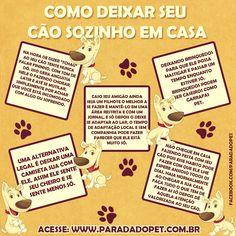 #Dicas - @Parada do Pet - Aprenda a deixar seu cãozinho em casa de forma confortável.
