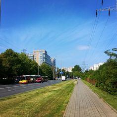 Zielona ulica Woronicza. Po prawej stronie znajdują się piękne, ciche ogórdki działkowe :) #zieleń #woronicza #inwestycja #developer #development#mieszkanie #dom #ogródki #działka