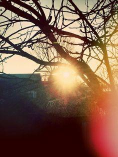 Early morning sunrise......