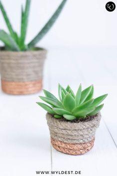 Eine wunderbare Upcycling-Idee ist es, Pflanzentöpfe mit einem Naturseil zu verschönen. Die Kupferfarbe macht Deine Pflanzen zu einem Hingucker auf Deiner Fensterbank. Mit meiner Schritt-für-Schritt Anleitung kannst Du diese DIY Deko-Idee ganz leicht nachmachen. Diy Flowers, Flower Pots, Small Lounge Rooms, Diy Blog, Boho Diy, Diy Interior, Cool Diy Projects, Upcycle, Planter Pots