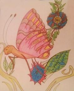 www.kcantrartideas.weebly.com