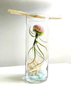 Under the sea terrarium large glass vase by omorfigiadesigns