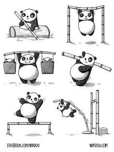 Let the PANDALYMPICS begin!! Let's get down to business!!!
