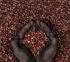 Africa Fact: Ethiopia is where coffee beans first originated.