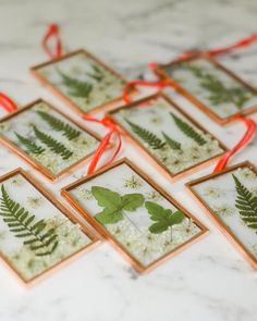 Real pressed flower fern Christmas ornament glass copper