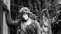 «Θυμάμαι…», ένα ποίημα της Σοφίας Κιόρογλου