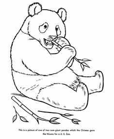 giant panda coloring page visual aids pinterest giant pandas