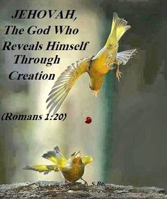 Praise Jehovah our God for all eternity! Bible Scriptures, Bible Quotes, Bible Bible, Roman 1, Spiritual Thoughts, Bible Truth, Jehovah's Witnesses, Know The Truth, Word Of God