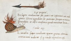 British Library, Royal MS 12 C III, detail of f. 9v. c 1507, A system of ideographic writing, in Latin, composed probably by an Italian at the end of the 15th or beginning of the 16th century, and illustrated by coloured drawings of the emblems and examples of sentences constructed from them.