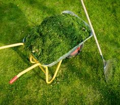 How & Why to Mulch the Heck out of Your Vegetable Garden.  Garden mulch is a must-have in organic gardens to suppress weeds, save water, build soil fertility, and drastically cut back on the work you'll have to do.