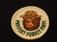 Smokey The Bear Smokey Bear Patch Prevent Forest Fires. $3.50, via Etsy.
