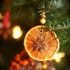Thin slices oranges or lemons put in warm oven a few hrs then decor w/ anises or cin sticks tree ornaments