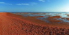 Red colored beach of Nabq Bay on the Sinai Peninsula in Egypt
