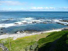 Hermanus Marine Hotel tidal pool Homeland, Pools, South Africa, Followers, Globe, Boards, Swimming, African, Ocean