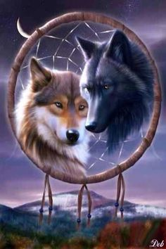 WOLVES DREAM CATCHER, IPHONE WALLPAPER BACKGROUND