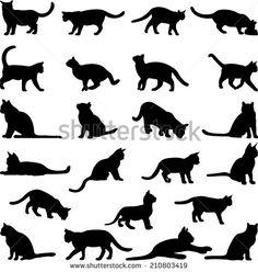 Cats Varastokuvat, valokuvat ja kuvat | Shutterstock