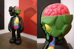 kaws - dissected companion