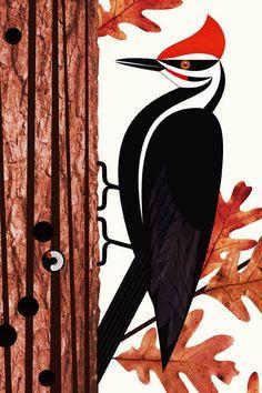 Scott Partridge - illustration - pileated woodpecker