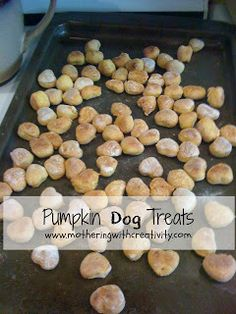 Mothering with Creativity: Pumpkin Dog Treats-Easy and Frugal!